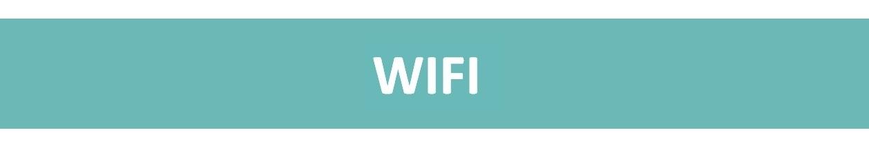 WIFI<p>Offrez la connexion wifi à vos clients !</p>