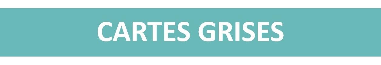 CARTES GRISES<p>Vous pouvez aussi faire des cartes grises pour vos clients dans votre commerce !</p>